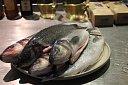 Jak skvěle připravit mořské a sladkovodní ryby